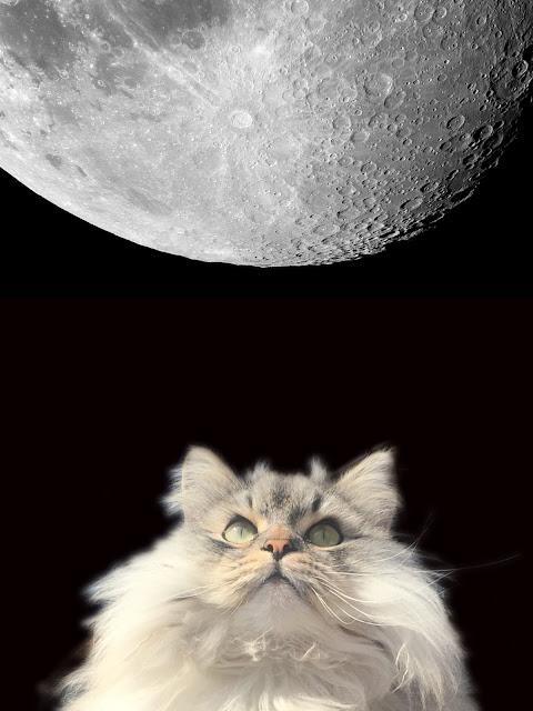 Puri Gagarin looking up at Moon.