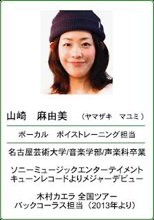 http://www.studio-vibes.jp/p/yamazaki.html