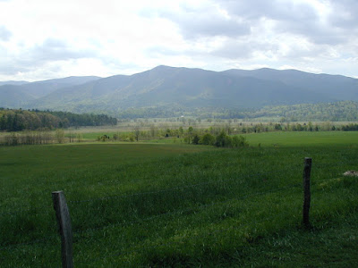 A view of the fields and mountains of Cades Cove.
