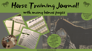 Horse training journal
