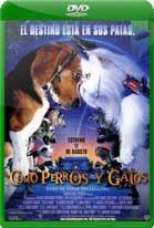 Como perros y gatos (2001) DVDRip Latino
