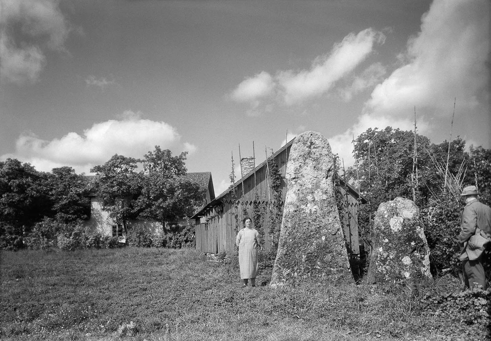 Picture stones at a farmstead in Änge in Buttle on the island of Gotland. 1937.