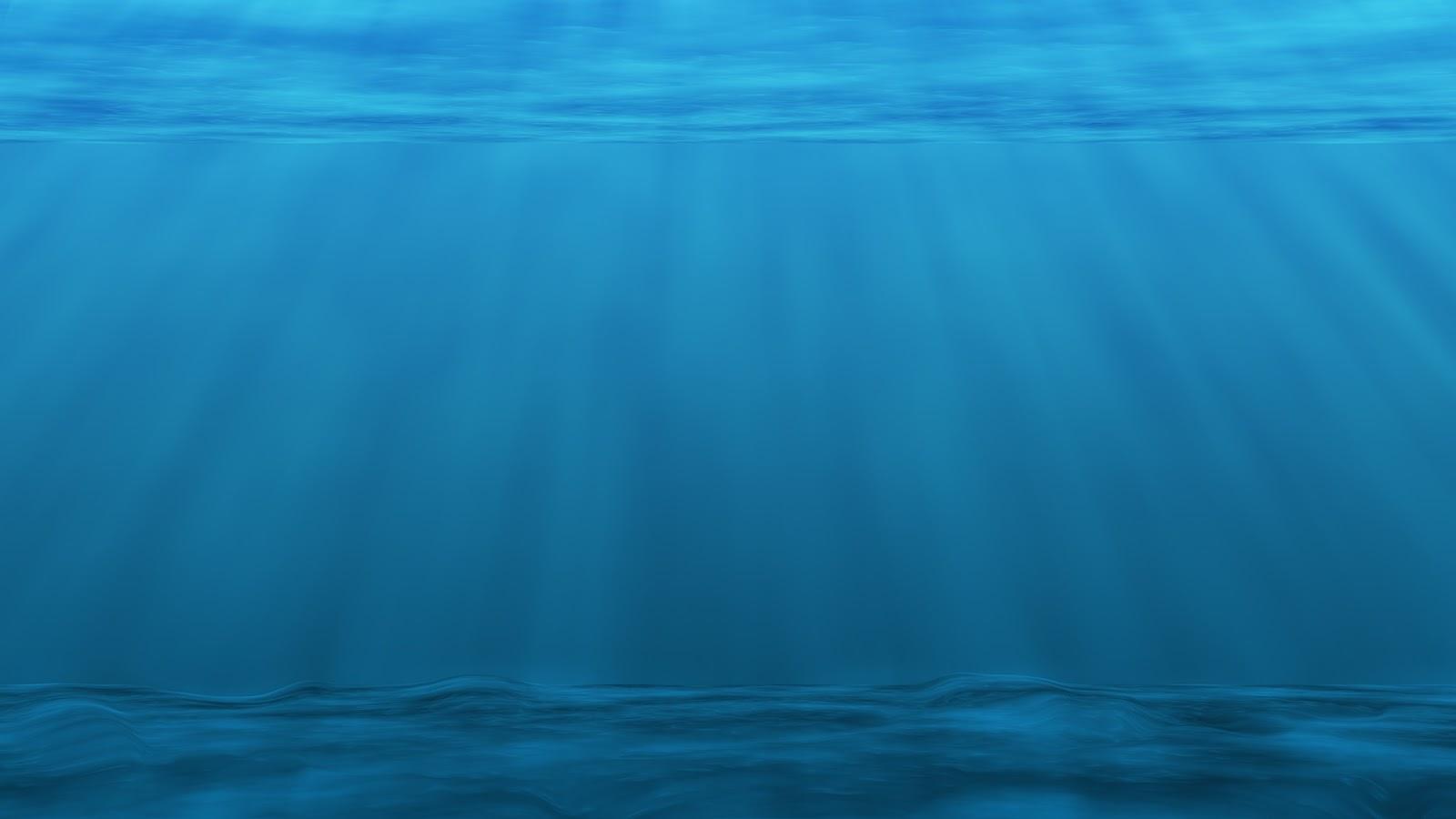 770+ Gambar Hewan Laut Mematikan HD Terbaru