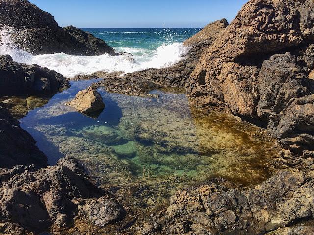 Rockpools at Little Bay Port Macquarie