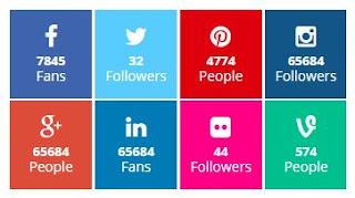 Widget Media Sosial