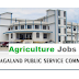 Agriculture Officer (Class-II Gazetted) under Department of Agriculture.