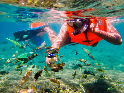 Kegiatan Menyelam di Gili Trawangan