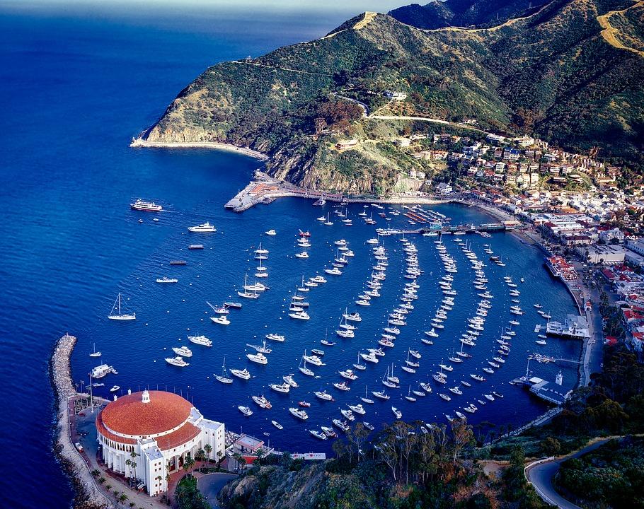 Catalina island hot spots for Catalina island fishing charters