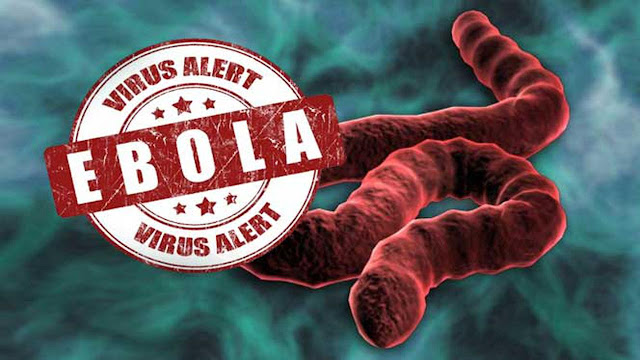 Waspada, 4 Virus Alien yang Mematikan Ini Ada di Bumi