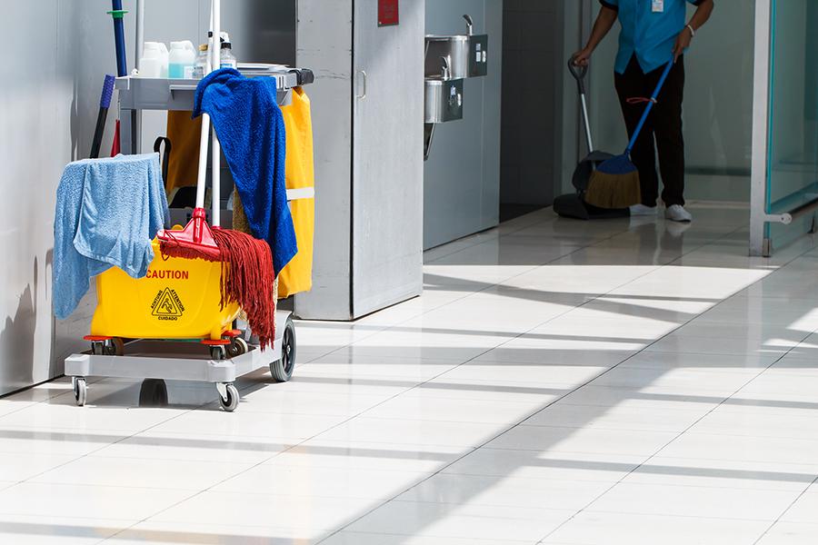 Cleaner dominicana personal de limpieza para oficinas en for Limpieza oficinas