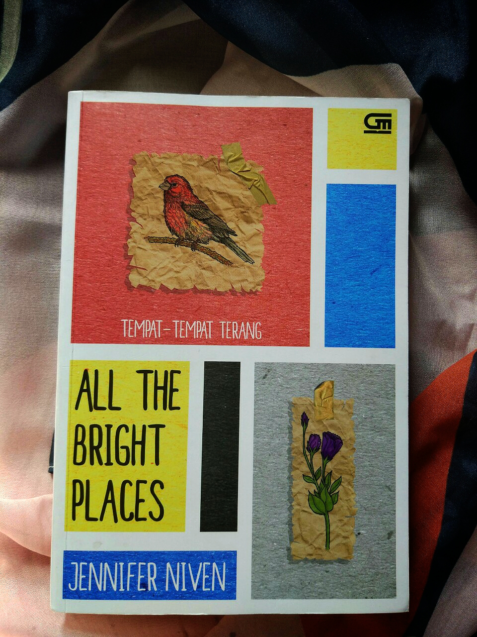 Sinopsis All The Bright Places : sinopsis, bright, places, Review, Bright, Places, (Tempat, Tempat, Terang), Jennifer, Niven
