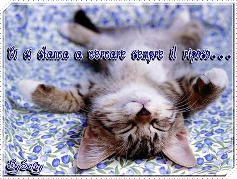 Non sono solo parole buon week end for Buon weekend immagini simpatiche