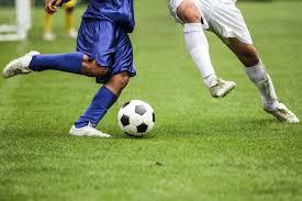 Confira os principais destaques do esporte em Elesbão Veloso e arredores nesta quinta-feira, 25 de julho 2019