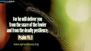 Psalm 91:3 - Surely he shall deliver you from the snare of the fowler, and from the deadly pestilence.