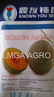 melon golden aroma, melon daging kuning, Known You Seed Taiwan,Buah besar,