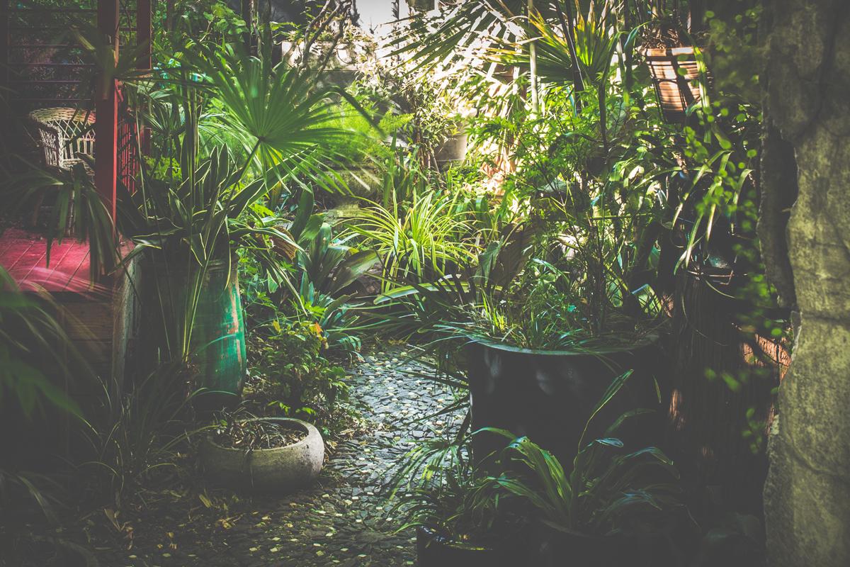 Jardin de b signoles le jardin vu au travers de l for Jardin 7 17
