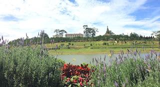 Các mùa hoa nở đẹp ở Đà Lạt trong năm