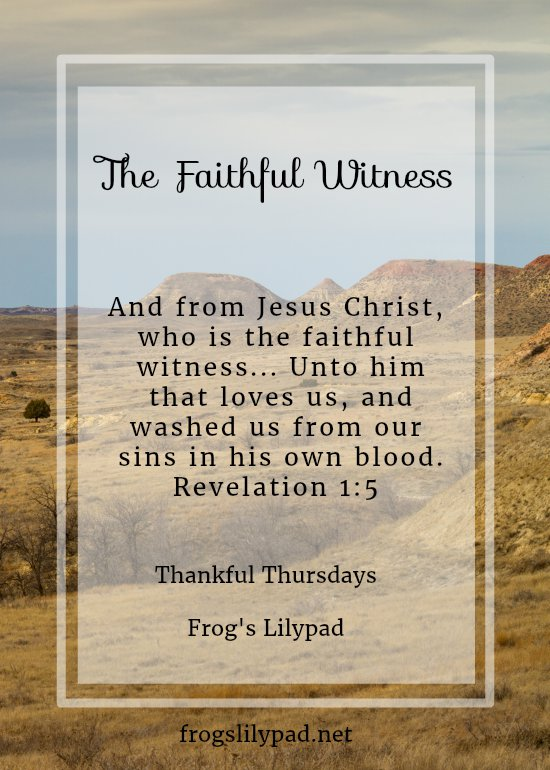 Jesus was faithful to the cross. He was faithful to the people of the world at that time, He was faithful for you and me. He was The Faithful Witness. frogslilypad.net