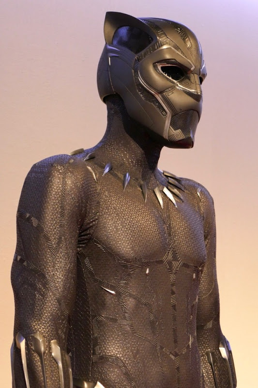 Avengers Infinity War Black Panther costume