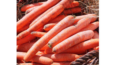 Carrot,carrot nutrition,carrot images,carrot pictures,