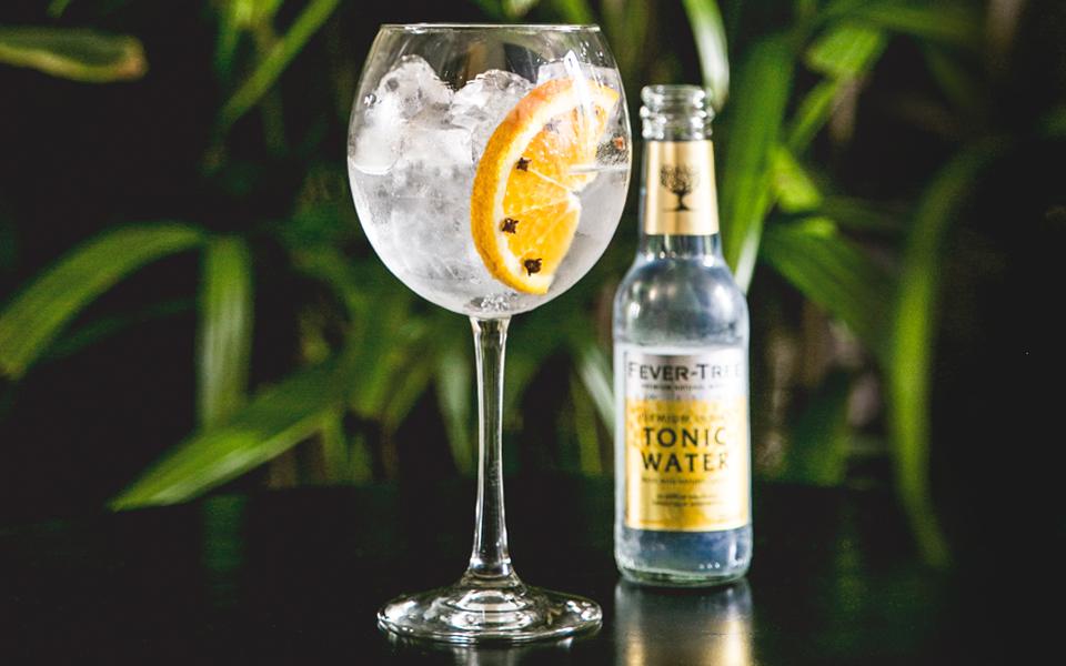 verter en una copa llena de hielo 50 ml de bobbyu0027s schiedam dry gin 2 agregar lentamente 150 ml de agua tnica fevertree indian tonic la ideal para el