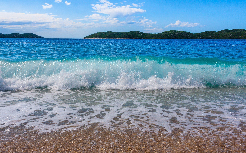 Ocean Beach Waves - Bi...
