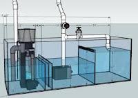 Cara Bikin Aquarium Sendiri