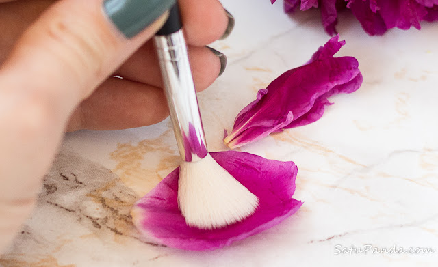 BEAU GÂCHIS COSMETICS Tapered Blending Brush