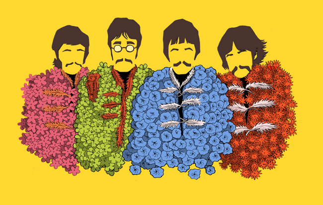 The Beatles Book Tag