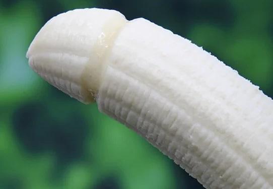ilustrasi penis