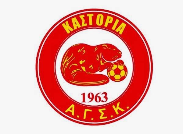 Η νέα διοίκηση του συλλόγου της Καστοριάς;