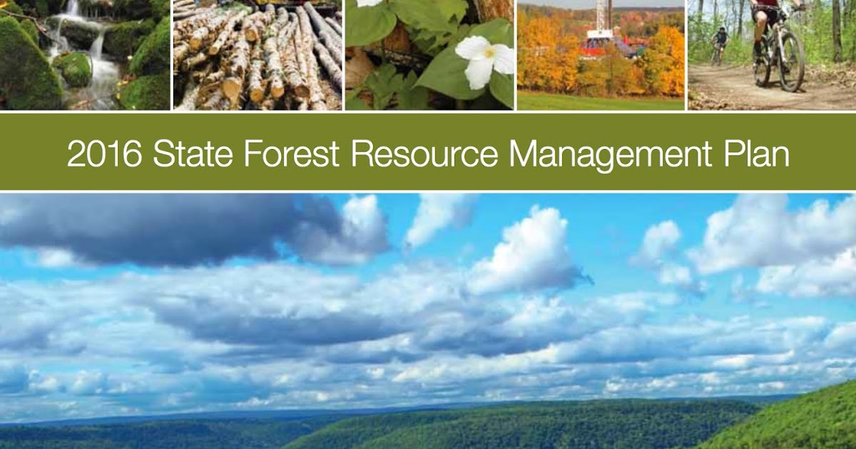 Forest Resource Management : Pa environment daily future of pennsylvania s state