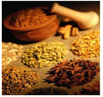 herbal medicine most primitive traditional approach Alternative medicine doctors use the approach to medicine that emphasizes treating the person as a whole, with special attention to the interconnections of the mind and body and of the systems within the body.