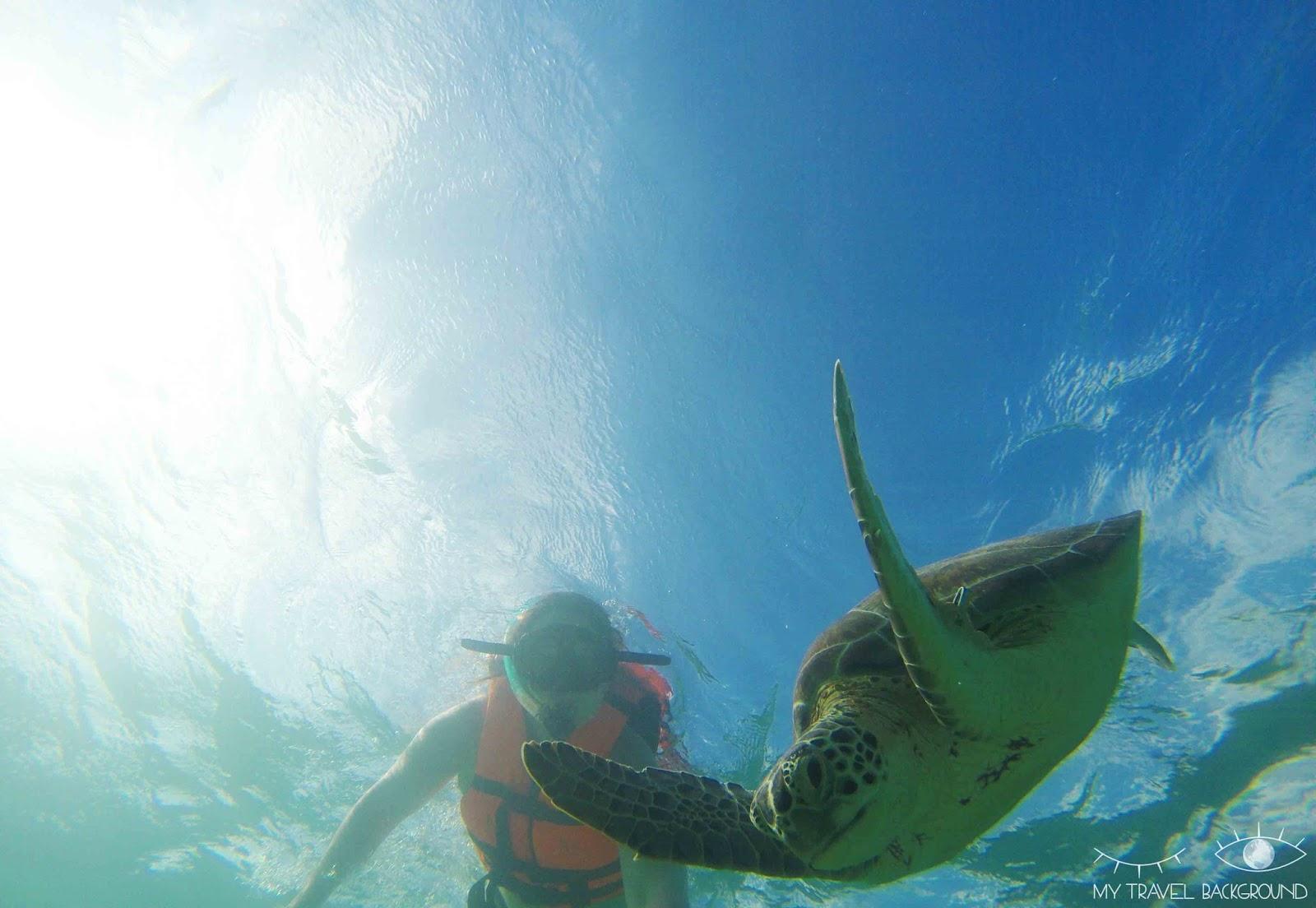 My Travel Background : 8 lieux où plonger dans le monde, Mexique