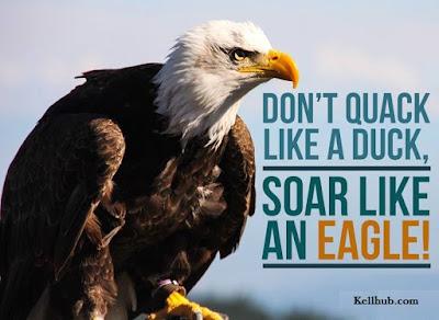 DON'T QUACK LIKE DUCKS, SOAR LIKE AN EAGLE