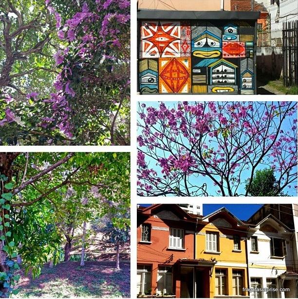 Feriadão em São Paulo - Pinheiros e Vila Madalena