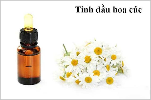 Tinh dầu hoa cúc trị rụng tóc
