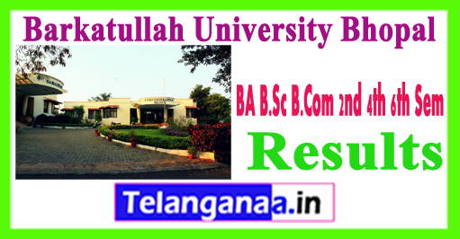 Barkatullah University Bhopal 2nd 4th 6th Sem Results 2018