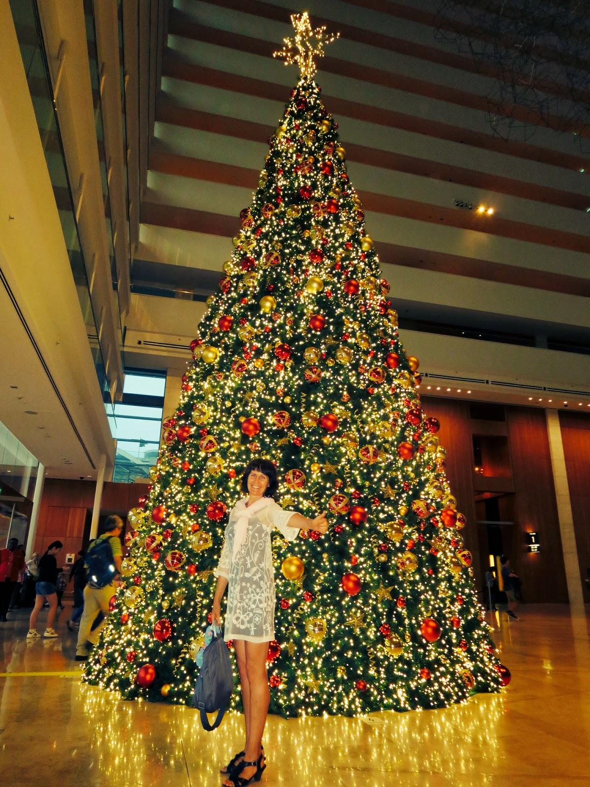 Weihnachtsgrüße In Die Ferne.Bis Zur 50 Um Die Welt Weihnachtsgrüße Aus Der Ferne