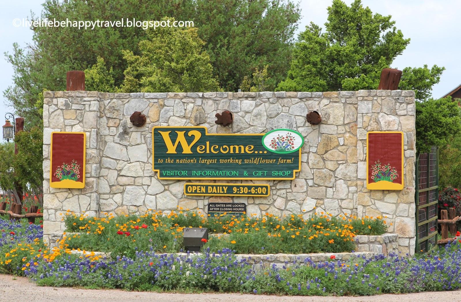 Live Life Be Happy: Wildseed Farms (Fredericksburg, Texas)