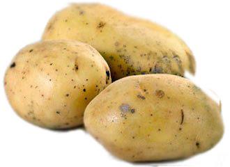 Potatoes Peru, 3.000 varieties of potatoe, Peru and the potatoe native