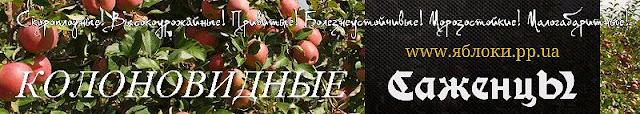 Саженцы скороплодных яблонь, 0957351986, 0985674877, Колоновидные, Штамбовые привитые, Ancient Apples