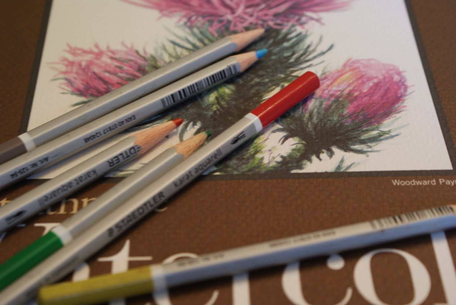 Ideas for Scrapbookers: Fun with Watercolor Pencils