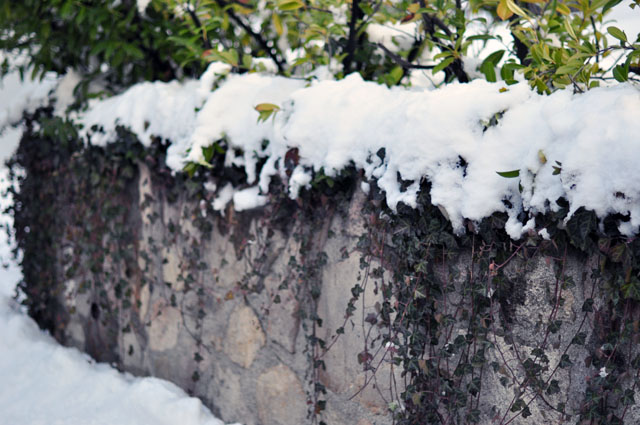 stone wall, covered in snow