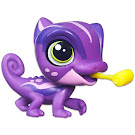 Littlest Pet Shop Singles Rainbow Maguire (#4067) Pet