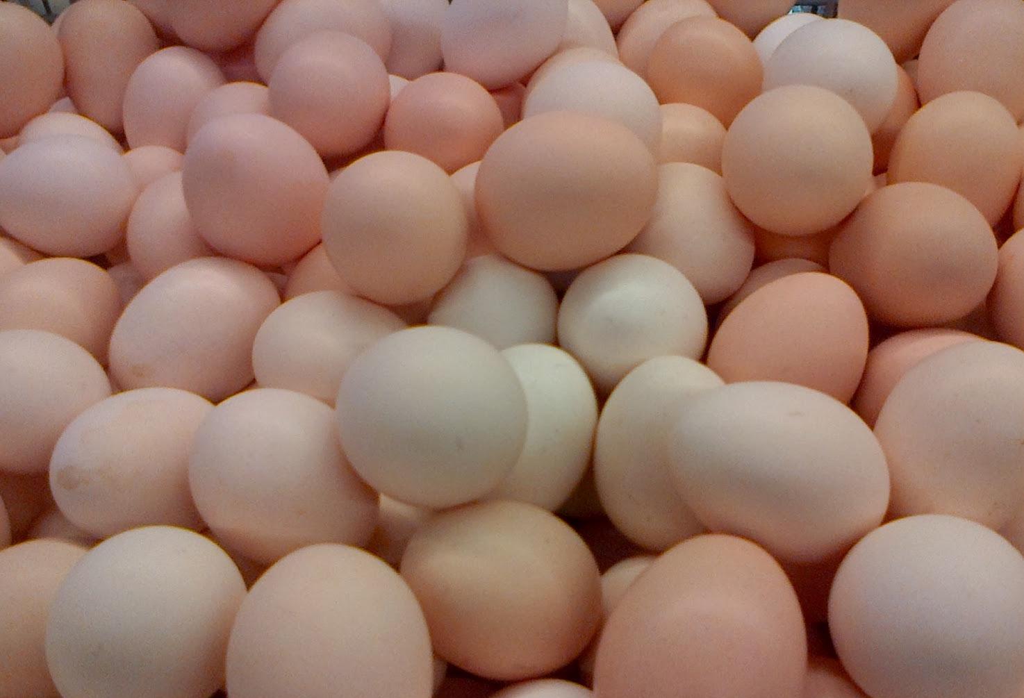 Manfaat Telur Asin Untuk Diet Sehat dan Alami