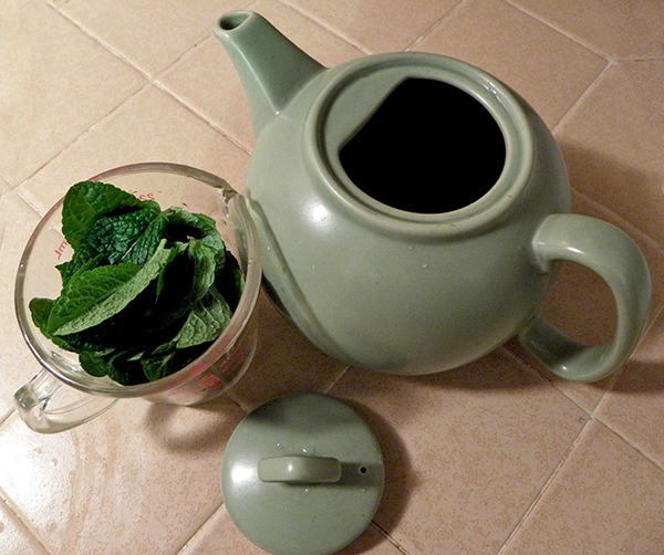 Teapot and Cup of Fresh Mint Leaves