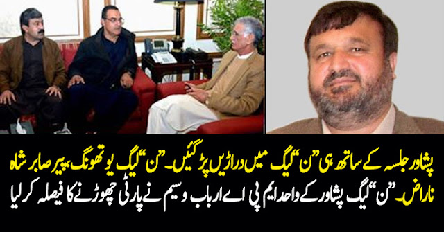PMLN MPA From Peshawar Arbab Waseem Likely To Join PTI