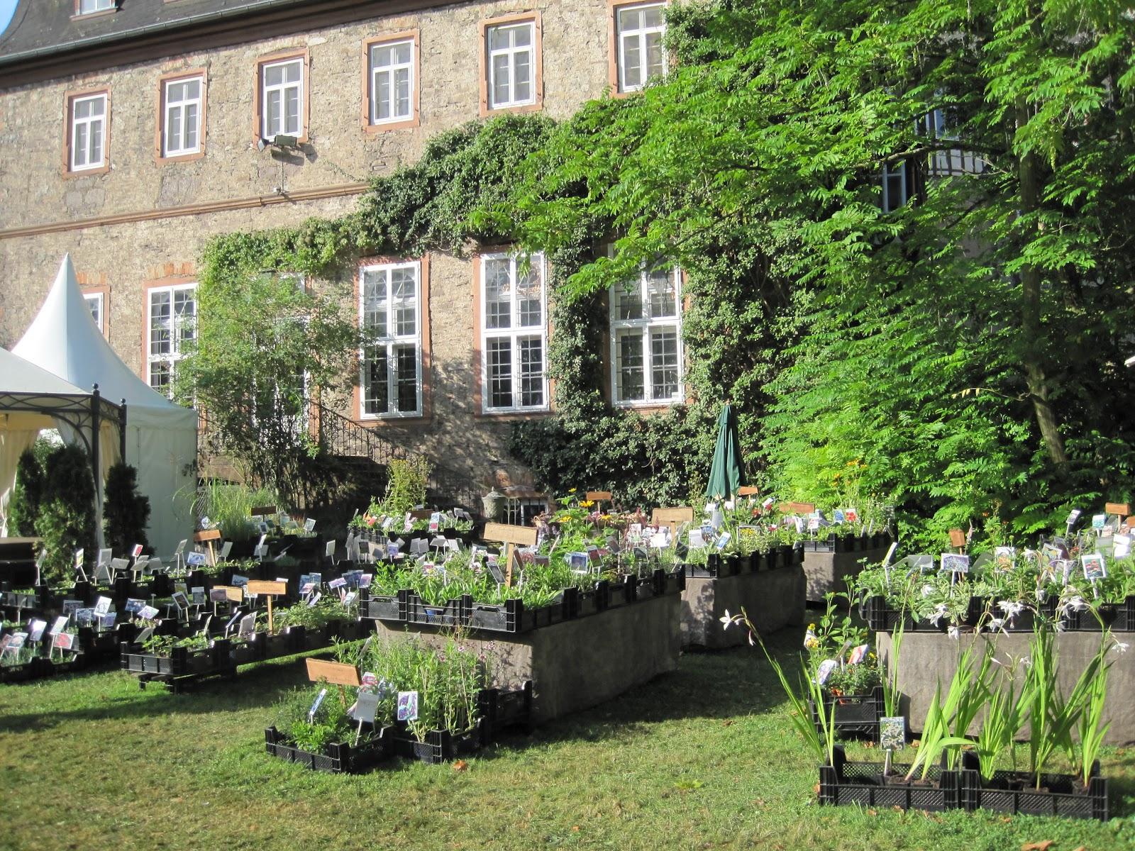 Das Hohe Haus Herbstzauber Schloss Laubach Teil 2 oder