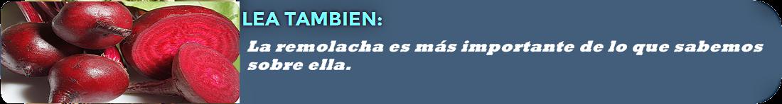 lea-tambien2